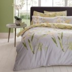Orchid Bouquet 300 Thread Count